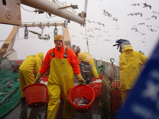 Jon Hare on trawl survey