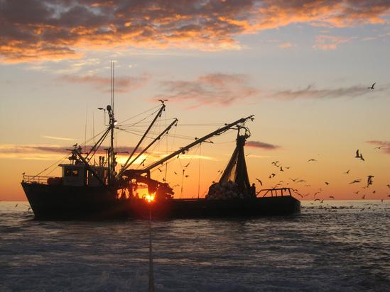 2816x2112-Western Sea_creditjeffmcclean_GARFO.jpg