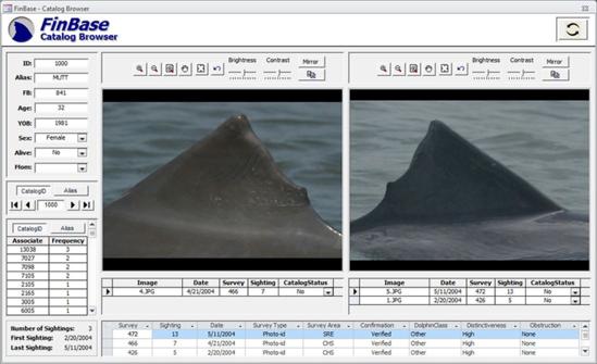 FinBase screenshot.png
