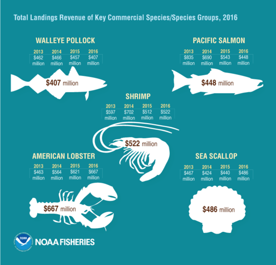 FEUS2016_Infographic_KeySpecies_FINAL.png