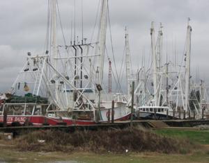 Boats in harbor.