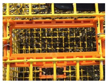 Rectangular escape vent_lobster.GIF