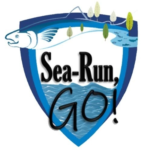 sea run go logo.jpg