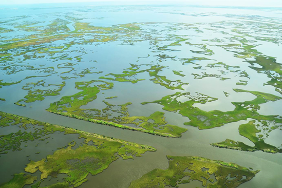An aerial view of green wetlands dotted across blue water