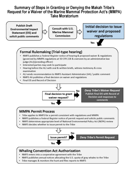 Makah Waiver Request Process Flowchart_4-1-19.png