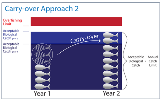 600x379-ns1-carryover-2-sf.png