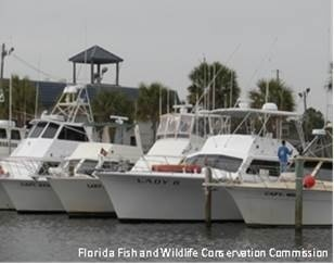 boats-gulf-at-marina-FWC-NMFS-SERO.jpg