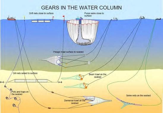 Fishing gears in water column