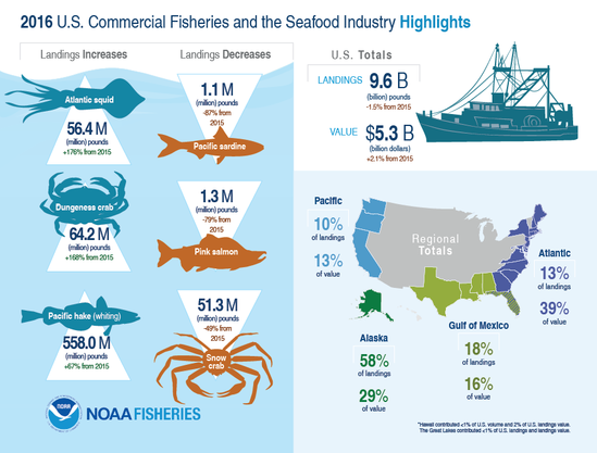 Infographic showing U.S. commercial fisheries and seafood industry statistics from 2016