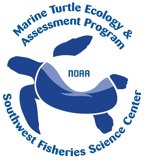 Marine Turtle Ecology and Assessment Logo
