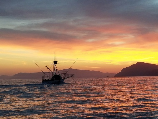 commercial-fishing-vessel-off-southern-CA.jpg
