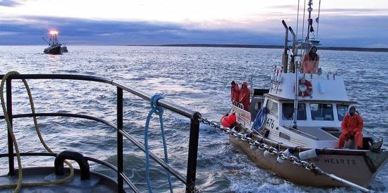 Bristol Bay Tender cropped.jpg