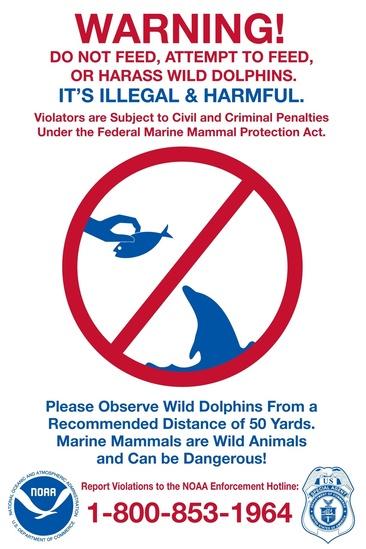 protect_dolphin_sign_feeding.jpg