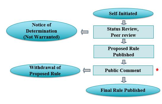The self-initiated esa listing process flowchart