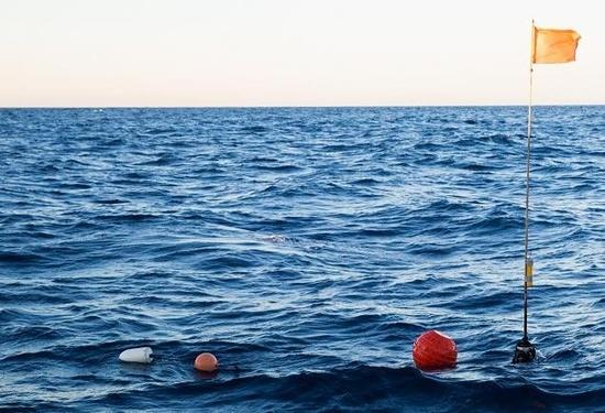 Buoys floating on the ocean