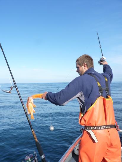 ODFW_Lynn Mattes_canary rf recreational fishing.jpg