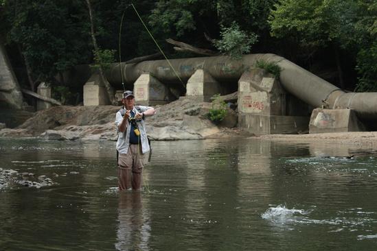 BobIrvin_fishing_PatapscoRiver 3x2 American Rivers.jpg