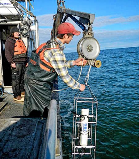 Early-Marine-Ecology_of_Juvenile_Chinook_Salmon - CTD.jpg