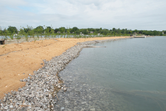 Friends of Detroit River  - Stony Island habitat shoal 3x2.jpg