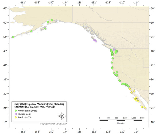 Map of Gray whale stranding locations