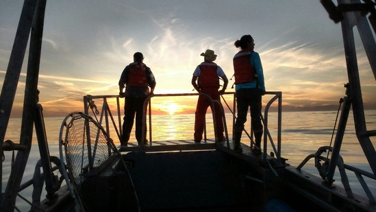 Leatherbacktracking_NOAASWFSC_LKom_2017.JPG