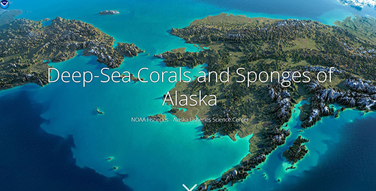 alaska deep sea coral storymap
