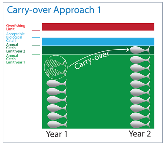 National Standard 1 Carry-over approach 1