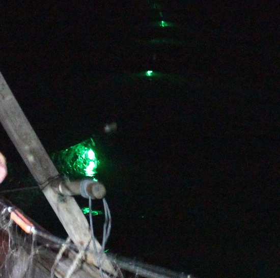 7. Nets Illuminated edit.jpg