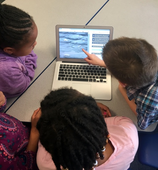 Students work to classify images on Steller Watch