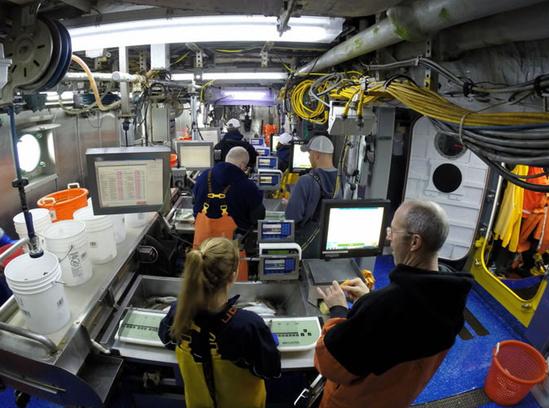 Fisheries sampling aboard vessel