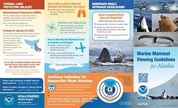Alaska marine mammal viewing guidelines and regulations booklet