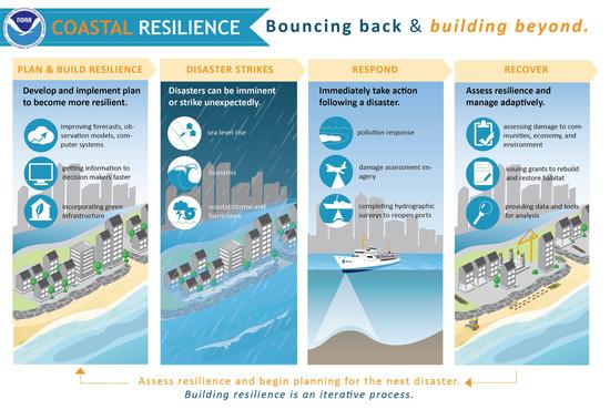 resilience-large.jpg