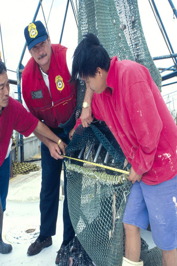Officer measuring TED on fishing boat.