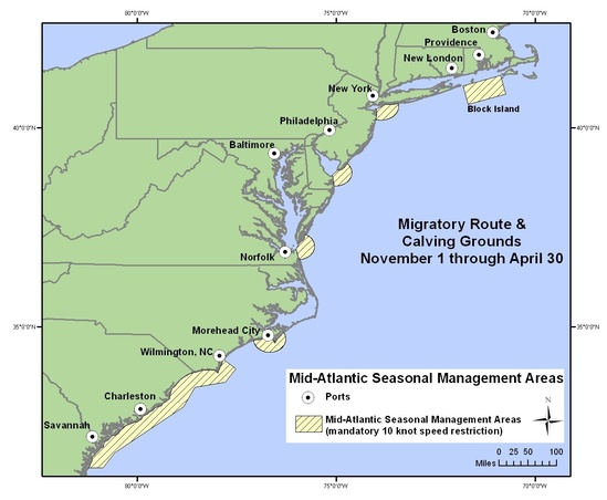 Map of Seasonal Management Areas off the Mid-Atlantic Coast