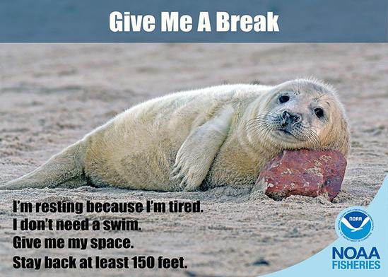 Give me a break_700x500.jpg