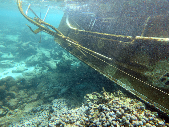 S/V Carib Being Blue on coral reef in St. Croix, U.S. Virgin Islands after Hurricane Maria