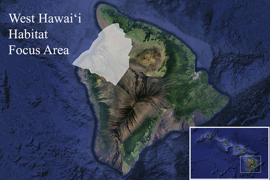 Google map the Island of Hawai'i and NOAA's West Hawai'i Habitat Focus Area.