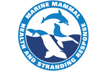 Marine Mammal Health and Stranding Repsonse Program logo