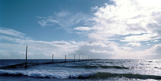 Photo of ocean from sahore with poles receding into the distance