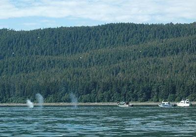 Boats along the Alaska coast.