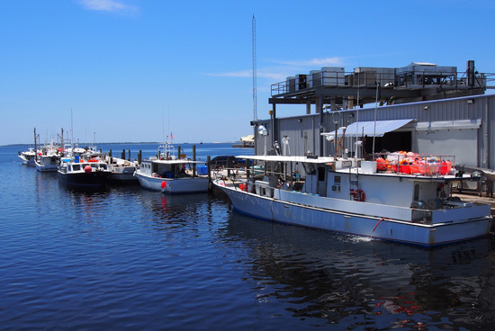 deepwater_horizon_oceanic_fish_pelagic_longline_fishing_boats_560_373.jpg