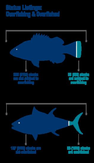 Status listings: overfishing and overfished