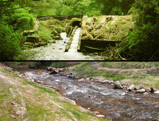 Town Brook MA before after.jpg
