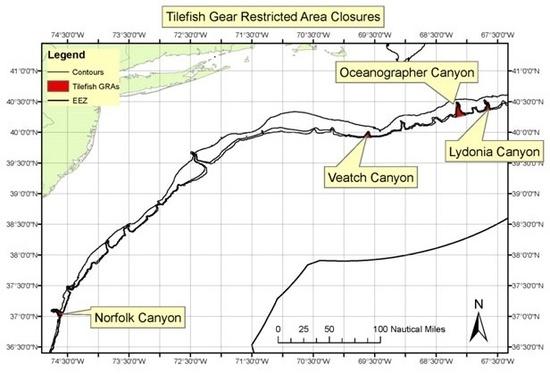 Tilefish gear.jpg