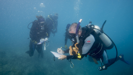 NOAA and partner divers recording data on coral damage in the Mosquito Reef (Puerto Rico).