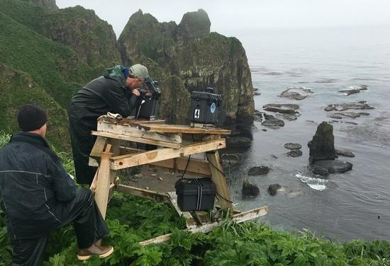 Fisheries biologist perform remote camera work