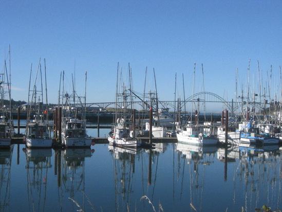 Newport_2010.jpg