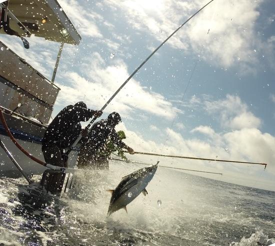 Handline Fishing Albacore Tuna_SWFSC.jpg