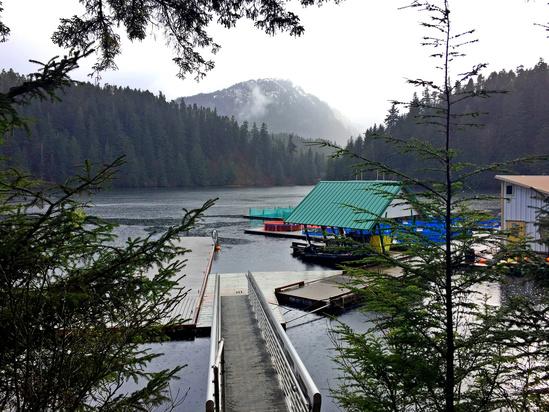 AFSC_Alaska Salmon Travels (6).jpg