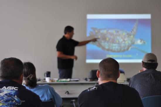 750x500-protected-species-workshop.jpg